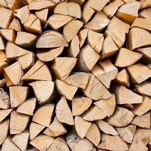 Wie Lange Muss Holz Trocknen : warum ist die trockenkammer wichtig f r uns kaminholz ~ Watch28wear.com Haus und Dekorationen