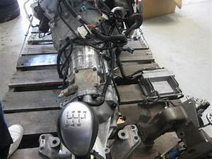 2004 Gto Ls1 V8 With T56 Transmission - Ls1tech