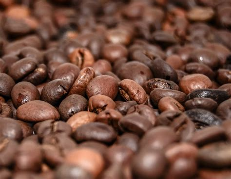 These vegan coffee beans are known for their punch. Best Coffee Beans For Espresso Uk