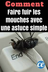 Comment Chasser Les Mouches : comment je fais fuir les mouches avec une astuce toute ~ Melissatoandfro.com Idées de Décoration