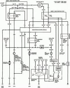Free Honda Accord Wiring Diagram.html