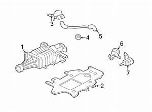Buick Park Avenue Engine Intake Manifold  1998